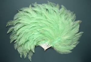 Rhea feather fan, 20th   century