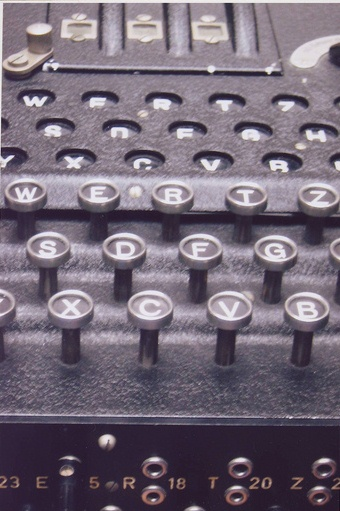 Enigma - photograph taken by Sue Applegate