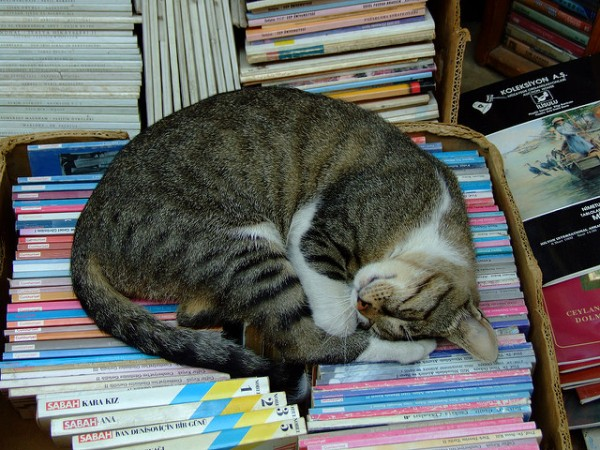 Reading is tiring